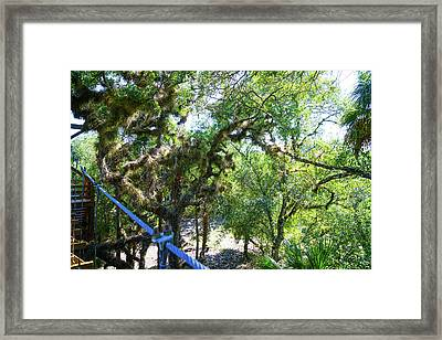 View Is Incredible Framed Print