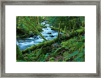 View Of A Stream Framed Print by Jeff Swan