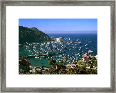 View Of Avalon Harbor Framed Print by Cliff Wassmann