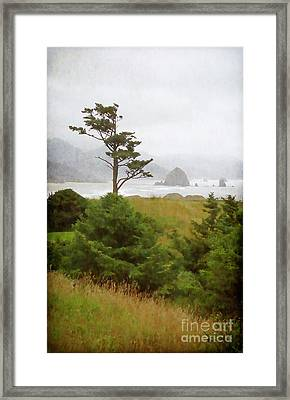 View Of Cannon Beach In The Fog Framed Print