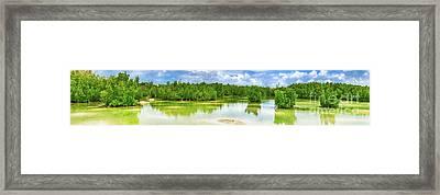 View Of Mangroves. Mauritius. Panorama Framed Print