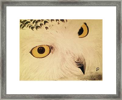 View Of Nature Framed Print by Annie Poitras