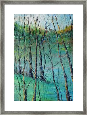View Of Nature's Canvas Framed Print by Robin Miller-Bookhout