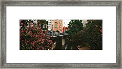 View Of San Antonio River Walk, San Antonio, Texas, Usa Framed Print by Panoramic Images