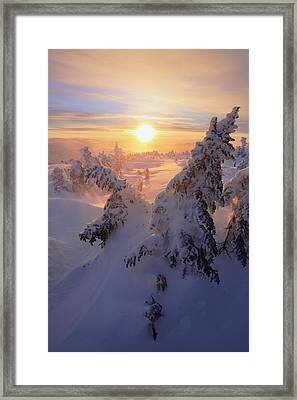 View Of Snow-covered Trees At Mont Framed Print by Yves Marcoux