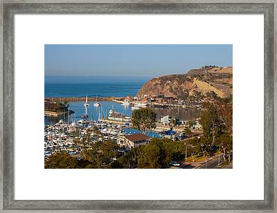 View Of West Basin Dana Point Harbor Framed Print by Cliff Wassmann