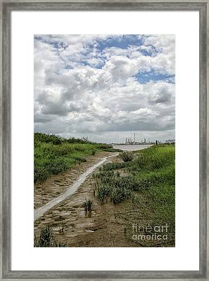 View On Suriname River Framed Print by Patricia Hofmeester