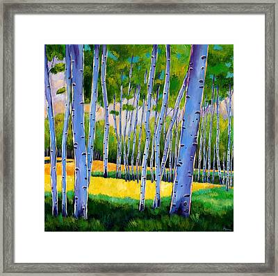 View Through Aspen Framed Print