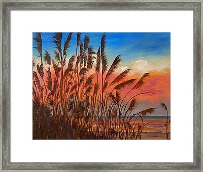 View Thru Seaoats Sold Framed Print