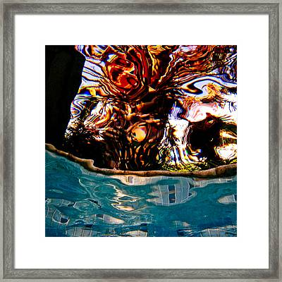 View Up 1 Framed Print by Barbara Kelley