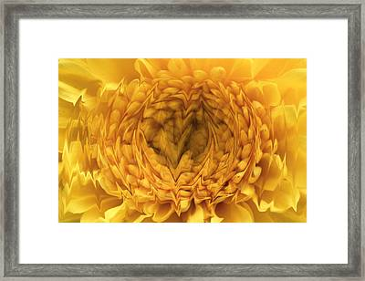 Framed Print featuring the photograph View Within by Shari Jardina