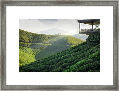 Viewpoint On The Top Of Cameron Highland Framed Print by Anek Suwannaphoom
