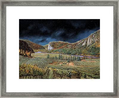 Vigne Nella Notte Framed Print