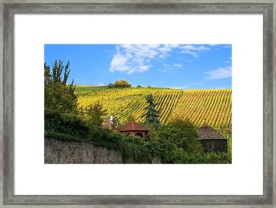 Village And Vineyards Of The Alsace Region Of France  Framed Print