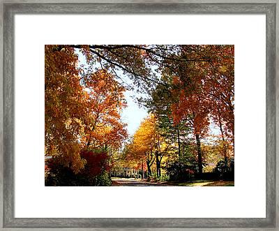 Village Street In Autumn Framed Print