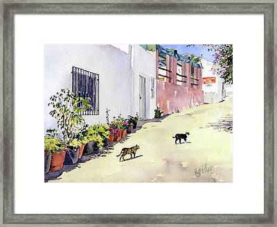 Village Street With Cats In Hortichuelas Framed Print by Margaret Merry