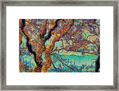 Vincent At Duxbury Bay Framed Print