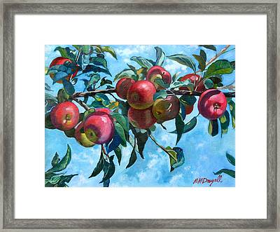 Vine Apples Framed Print by Michael McDougall
