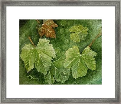 Vine Leaves Framed Print by Angeles M Pomata