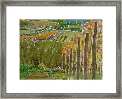 Vineyard And Cultivated Fields Framed Print by Janet Butler