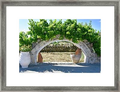 Vineyard Arch Framed Print
