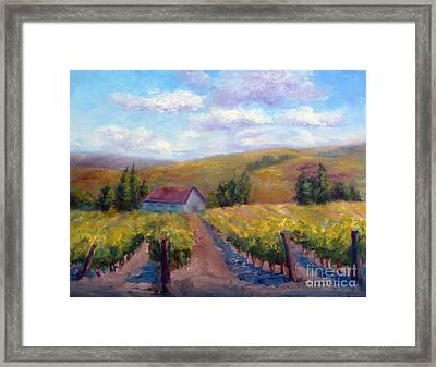 Vineyard Country Framed Print by Carolyn Jarvis