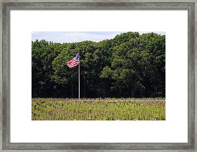 Vineyard Flag Framed Print by Brian Manfra