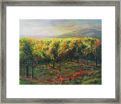 Vineyard Glow Framed Print