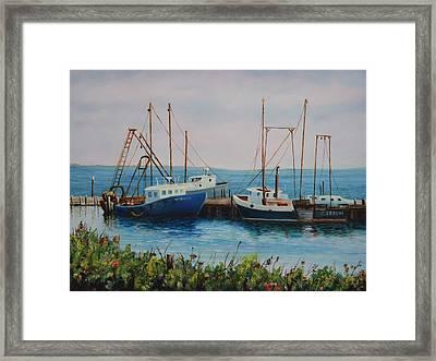 Vineyard Harbor 9 Framed Print