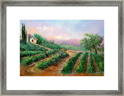 Vineyard Haven Framed Print by Sally Seago