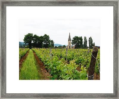 Vineyard In France Framed Print