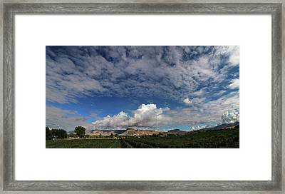 Vineyard Framed Print by Jerry LoFaro