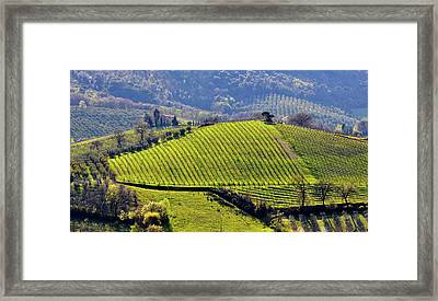 Vineyard Landscape In Italy Framed Print by Dutourdumonde Photography