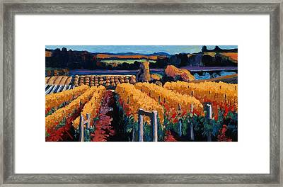 Vineyard Light Framed Print