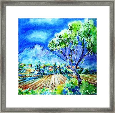 Vineyard Near Opoul In France  Framed Print by Trudi Doyle