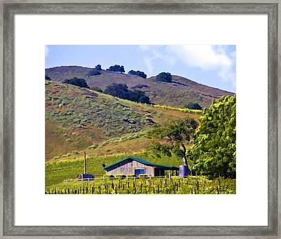 Vineyard Office Framed Print