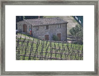Vineyard Framed Print by Pat Kunke