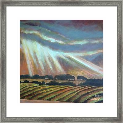 Vineyard Rain Framed Print by Kip Decker