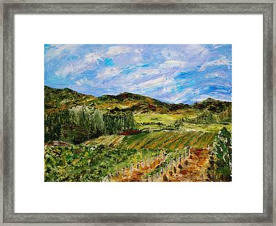 Vineyard Solitude Framed Print by Deborah Gall