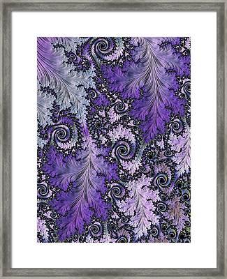 Vineyard Framed Print by Susan Maxwell Schmidt