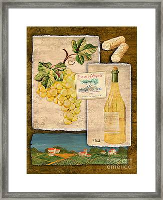 Vineyard View II Framed Print by Paul Brent