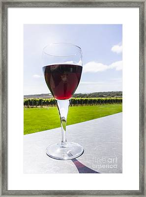 Vineyard Wine Glass Filled With Red Shiraz Framed Print