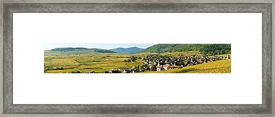 Vineyards In Autumn In The Morning Framed Print by Panoramic Images