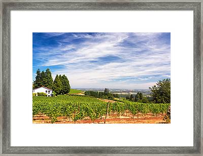 Vineyards In Oregon Framed Print by Jess Kraft