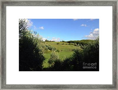 Vineyards In Tuscany Italy Framed Print by DejaVu Designs
