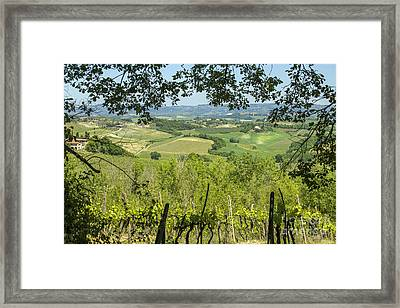 Vineyards In Tuscany Landscape Framed Print by Patricia Hofmeester