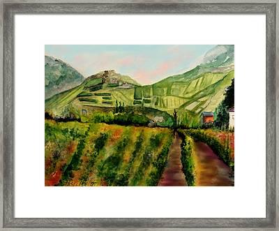 Vineyards Of Ahr Valley Framed Print