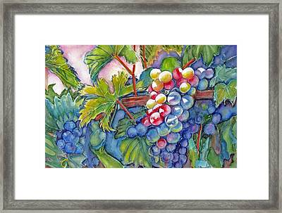 Vino Veritas II Framed Print by June Conte  Pryor