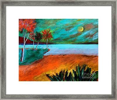 Vinoy Park Twilight Framed Print by Elizabeth Fontaine-Barr
