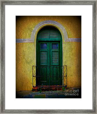 Vintage Arched Door Framed Print